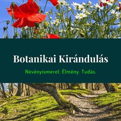botanikai kirándulás